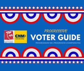 voterguide-cnm